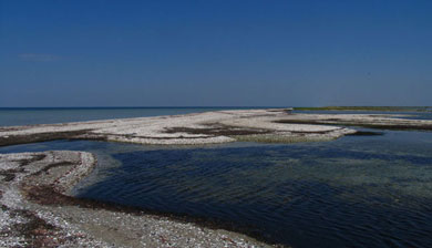Черноморский биосферный заповедник залив