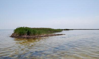 Джарылгач (остров) с воды